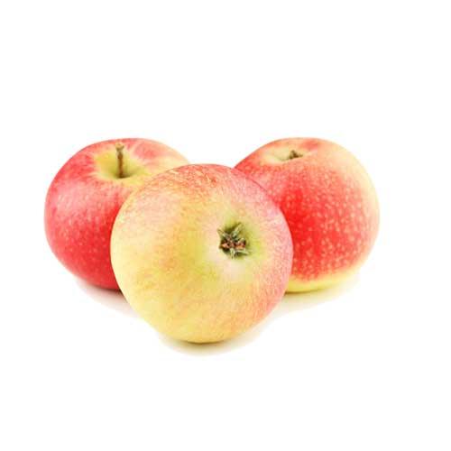 سیب گلاب درشت ممتاز