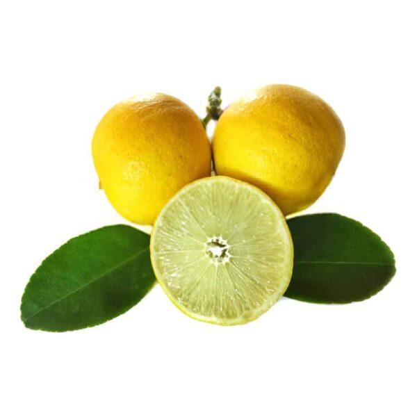 لیمو شیرین درجه یک