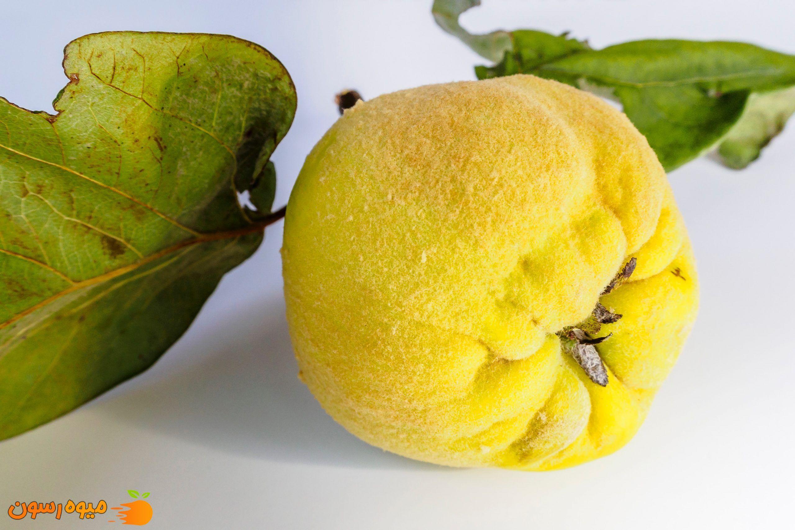 به از میوه های مفید برای کرونا